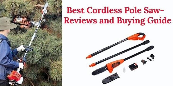 Best Cordless Pole Saw